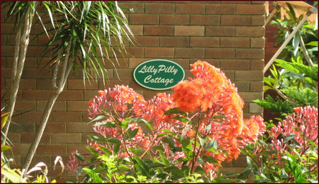 Lillypilly - Yamba Accommodation