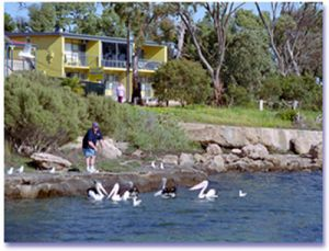 Almonta Holiday Apartments - Yamba Accommodation