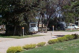 Paringa Caravan Park - Yamba Accommodation