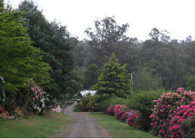 Mountain Rivers Lodge - Yamba Accommodation