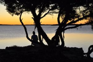 Willygunyah - Yamba Accommodation