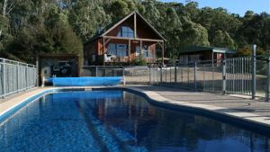 Karoonda Olive Grove Retreat at Mt Buffalo Olives - Yamba Accommodation