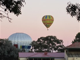 Barossa Valley Tourist Park - Yamba Accommodation