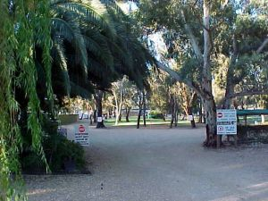 Kingston-On-Murray Caravan Park - Yamba Accommodation