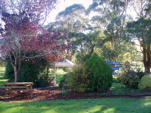 Toora Lodge Motel - Yamba Accommodation