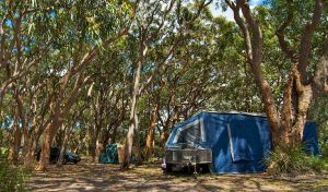 Stewart and Lloyds campground - Yamba Accommodation