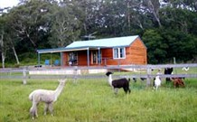 Moorallie Cottage Farm Stay - Yamba Accommodation