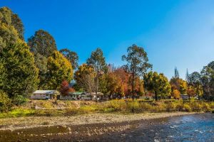 Porepunkah Bridge Holiday Park - Yamba Accommodation