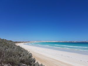 Coffin Bay National Park Campgrounds - Yamba Accommodation