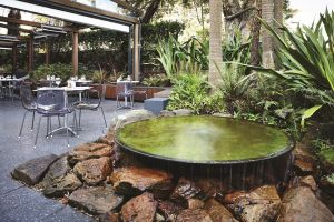 Hotel Urban St Leonards - Yamba Accommodation