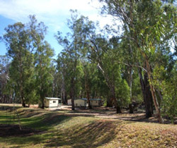 Balranald Caravan Park - Yamba Accommodation