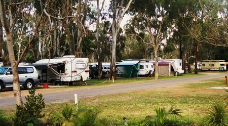 Buronga Riverside Tourist Park - Yamba Accommodation