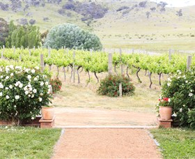 Brindabella Hills Winery - Yamba Accommodation