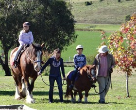 Bathurst Farm Experience - Yamba Accommodation