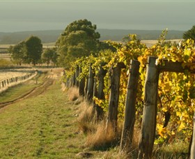 Captains Creek Organic Wines - Yamba Accommodation