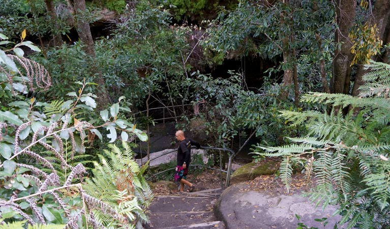 Leura Cascades Fern Bower - Yamba Accommodation