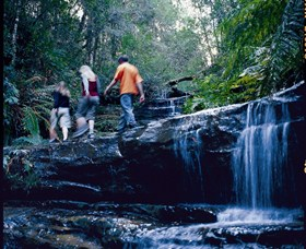South Lawson Waterfall Circuit - Yamba Accommodation