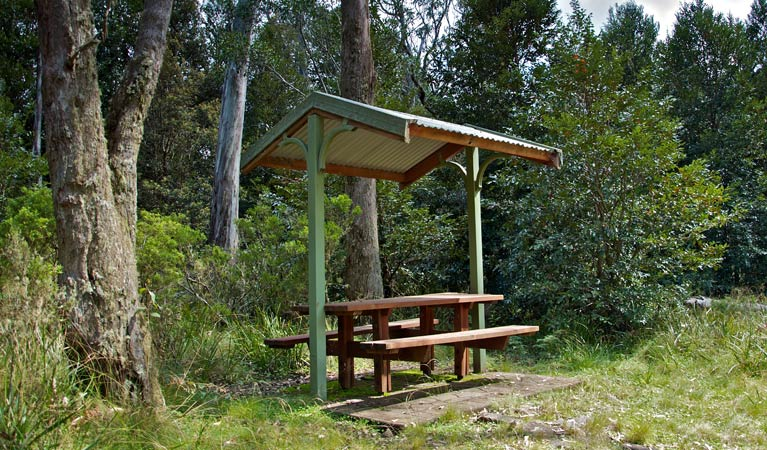 Devils Hole lookout walk and picnic area - Yamba Accommodation