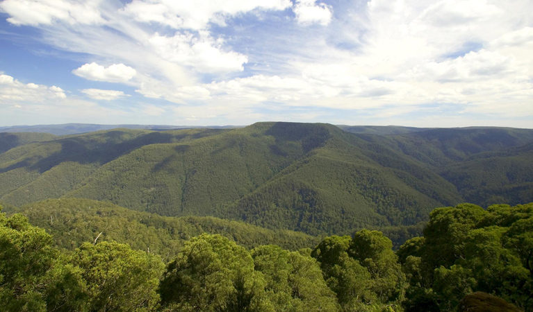 Barrington Tops National Park - Yamba Accommodation