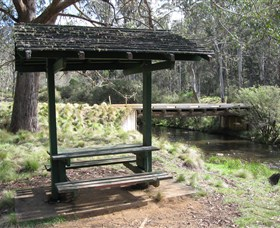 Barrington Tops State Forest - Yamba Accommodation