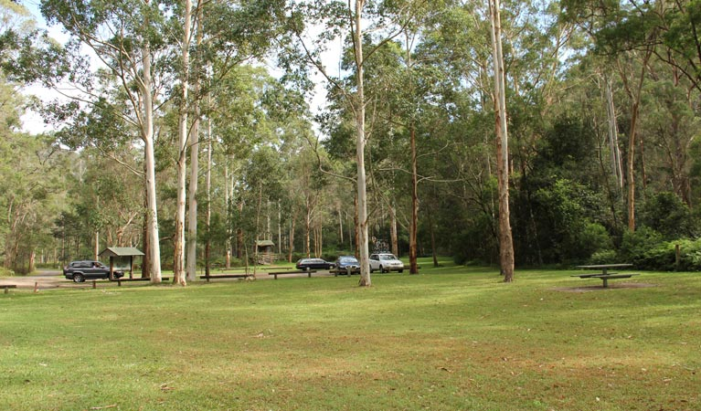 Mill Creek picnic area - Yamba Accommodation