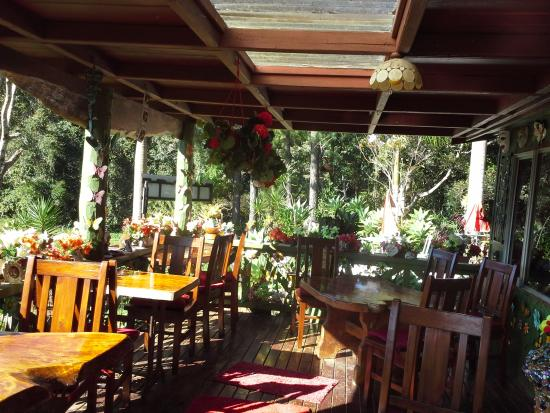 Suzannes's Hideaway Cafe - Yamba Accommodation